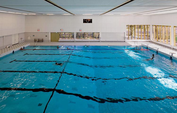 Zwembad De Fluit.Zwembad De Fluit Al Het Comfort Binnen Handbereik