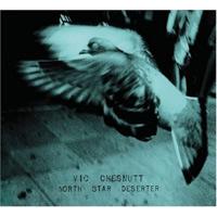 Vic Chesnutt - North Star Deserter